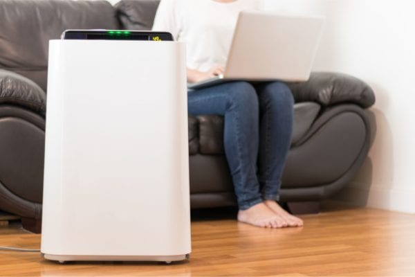 Should You Purchase a Home Air Purifier?